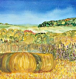 Hay Rolls in the Iowa fields.