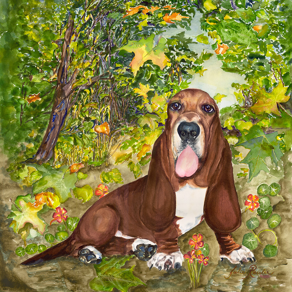 Fergi-in-the-Fall,-Basset-Hound
