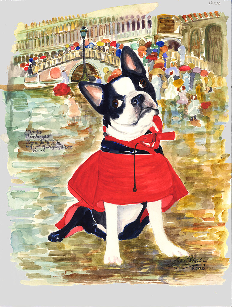 Jerry's-New-Raincoat-Boston Terrier