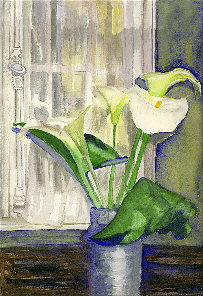 Calla Lily by Moonlight